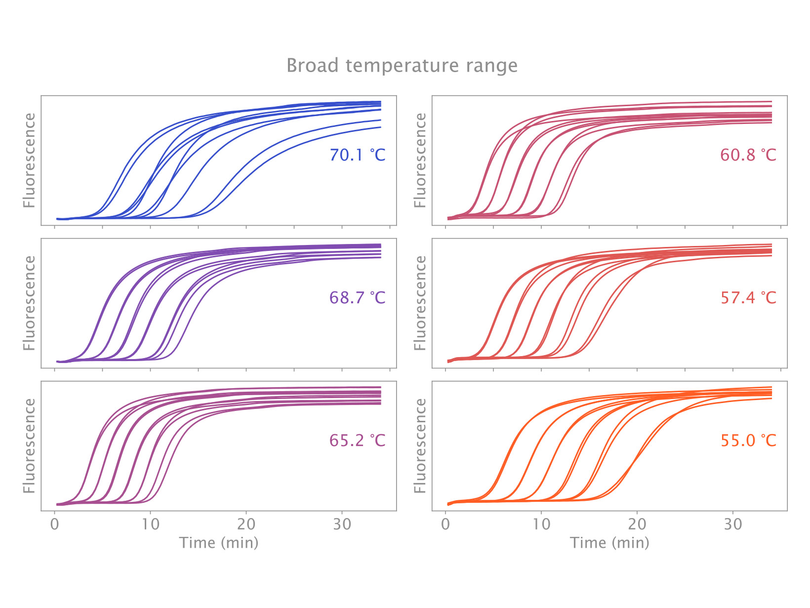 Data showing isothermal amplification of M13 scaffolding protein over a broad temperature range from 55°C to 70°C using IsoFast Bst Mix.