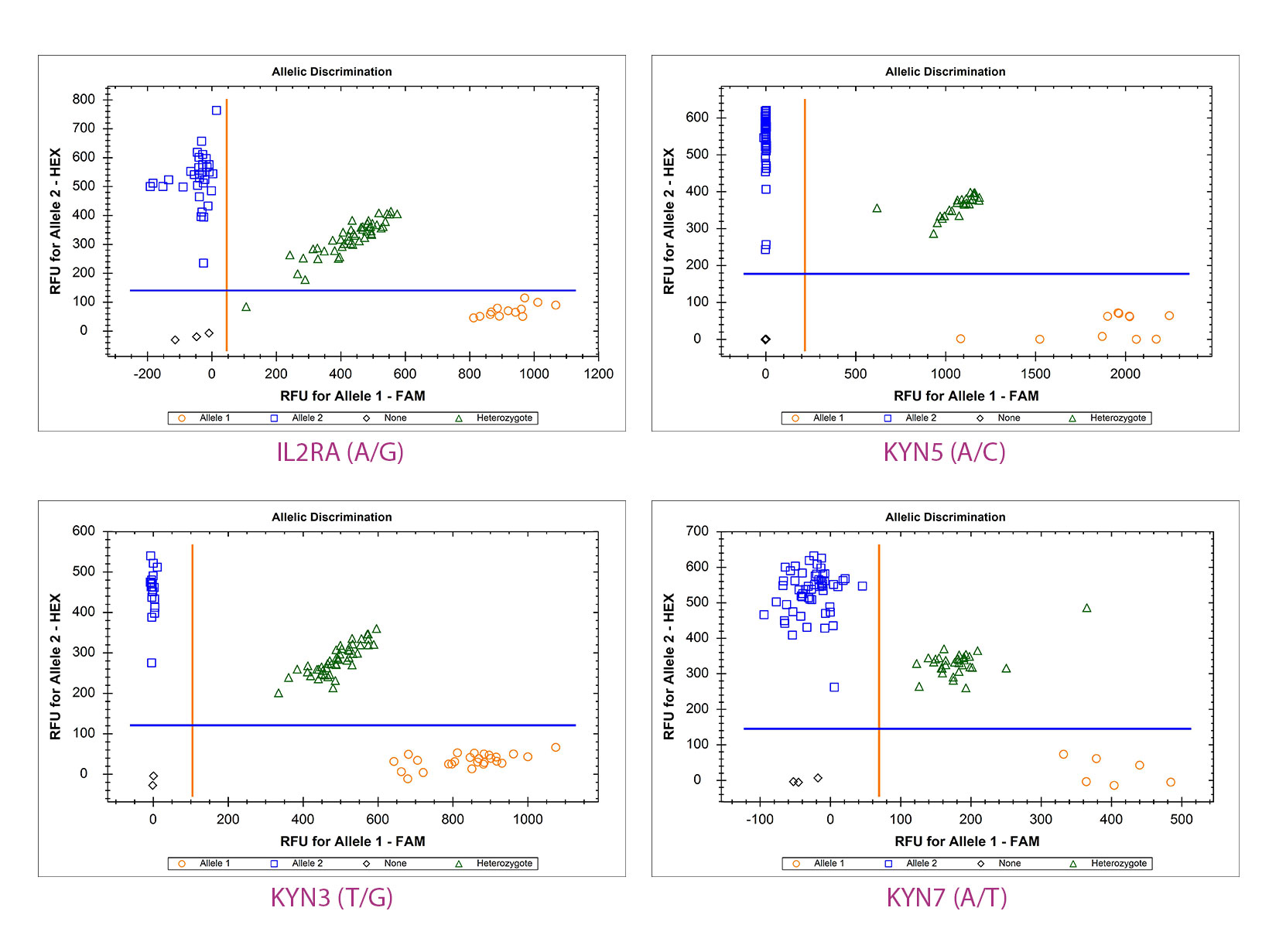 Data image showing analysis of 4 single nucleotide polymorphisms using qPCRBIO Genotyping Mix and TaqMan probes.