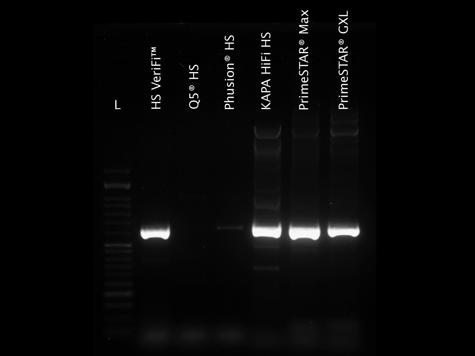 Gel image showing comparison of PCRBIO HS VeriFi Mix and leading competitors amplifying a GC-rich template