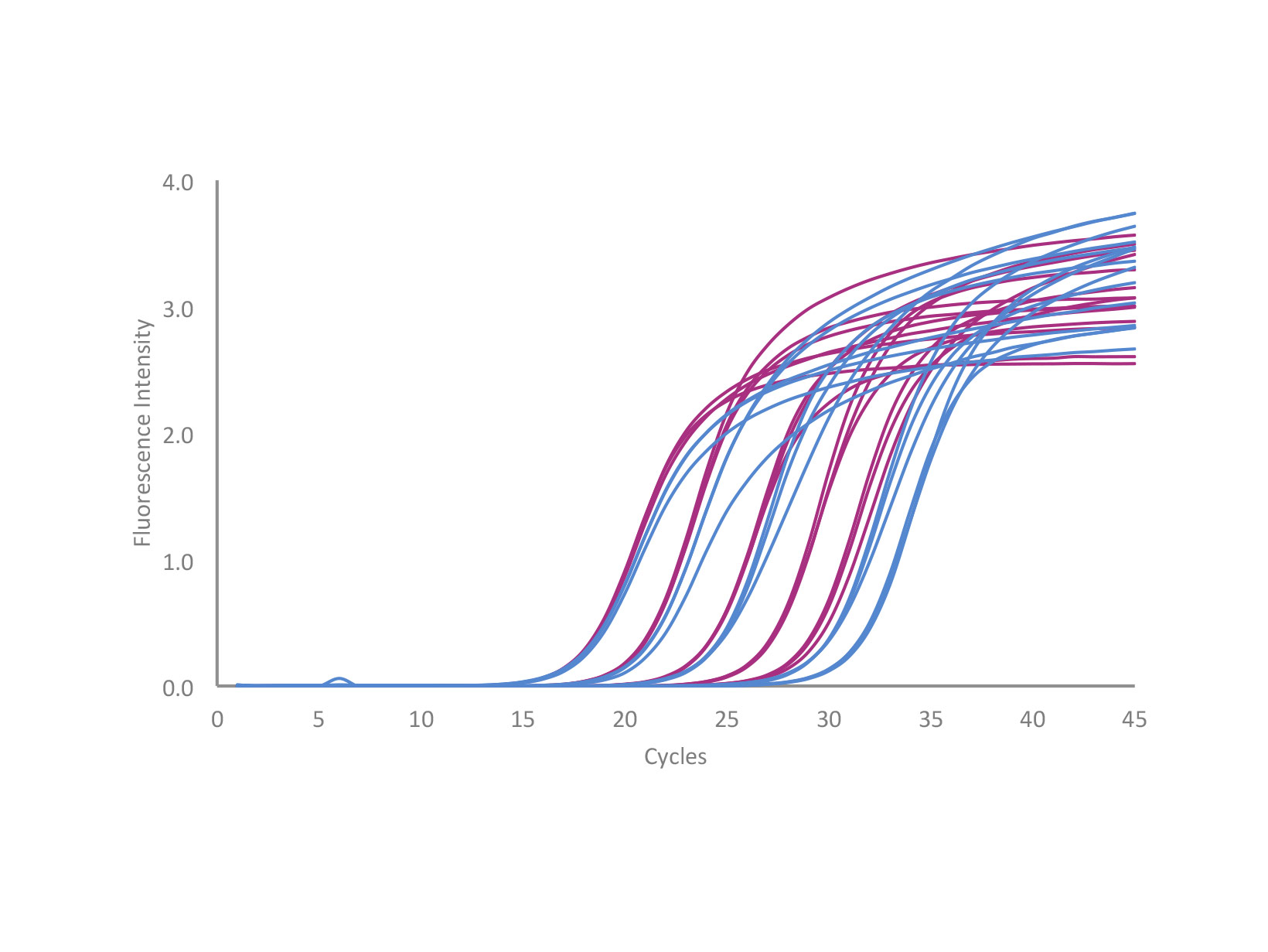 Comparison of qPCRBIO SyGreen 1-Step Go versus competitor Bioline