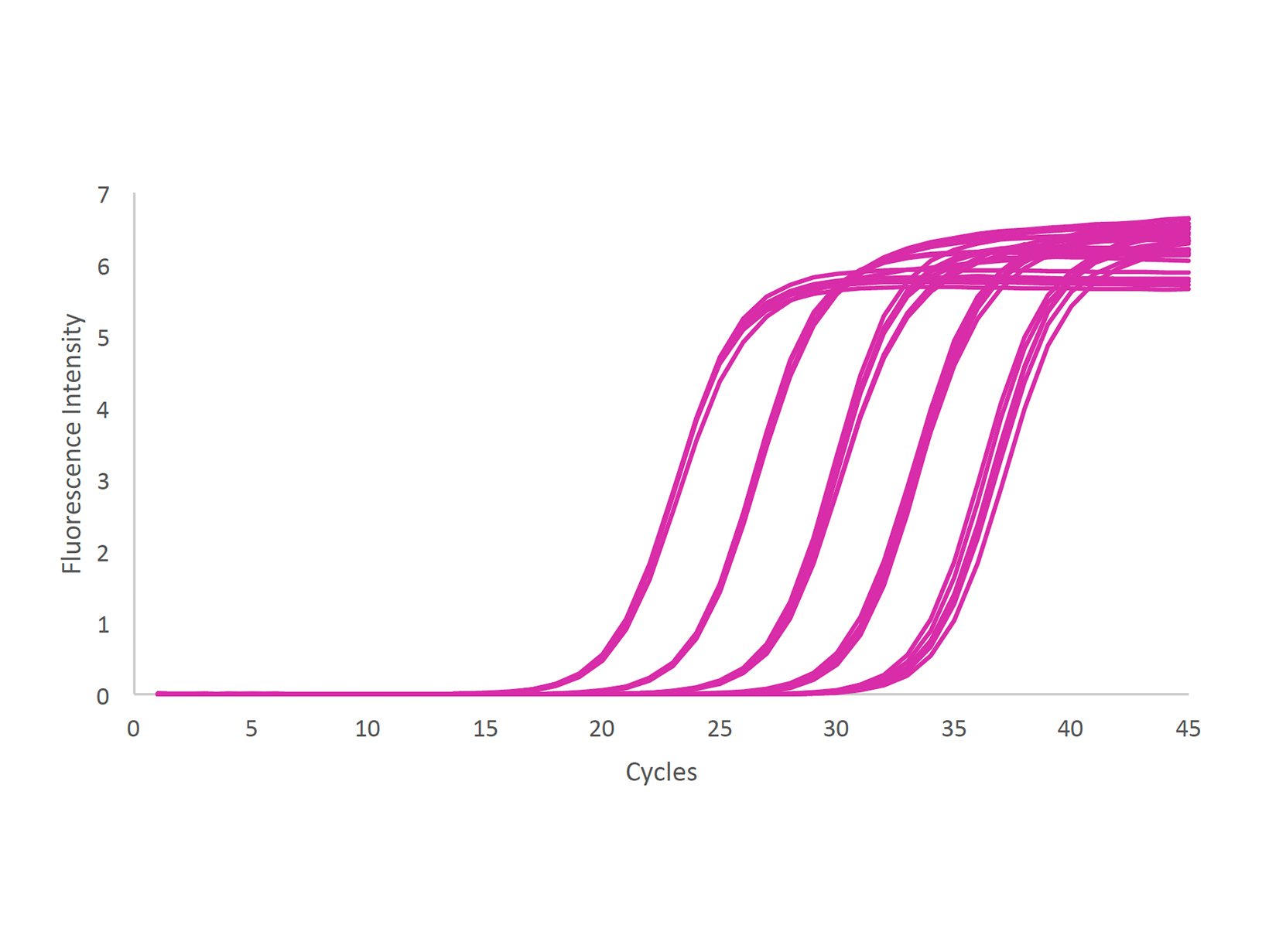 qPCR trace following cDNA synthesis from mouse total RNA serial dilution with qPCRBIO cDNA Synthesis Kit