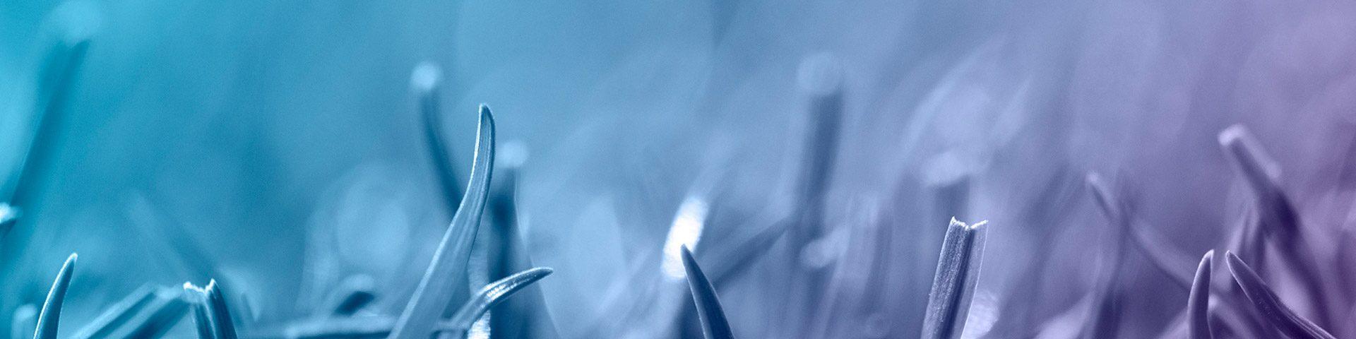 qPCRBIO Probe 1-Step Go Image Banner